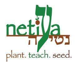 Netiya Logo