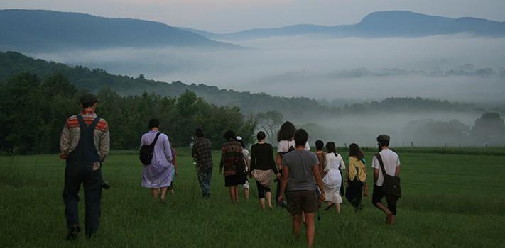 adamahniks in misty field