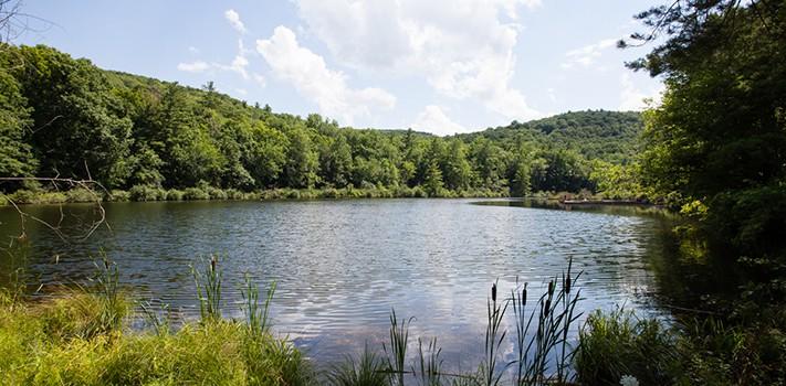 banner - lake 1