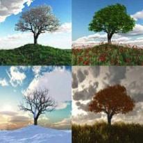 "Hazon Detroit – ""Health through the Seasons of Life"" – multiple events"