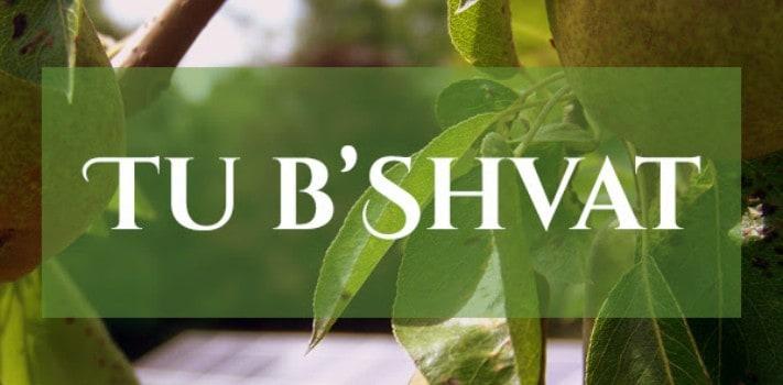 TubShvat_banner