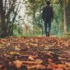 autumn-1869160__340